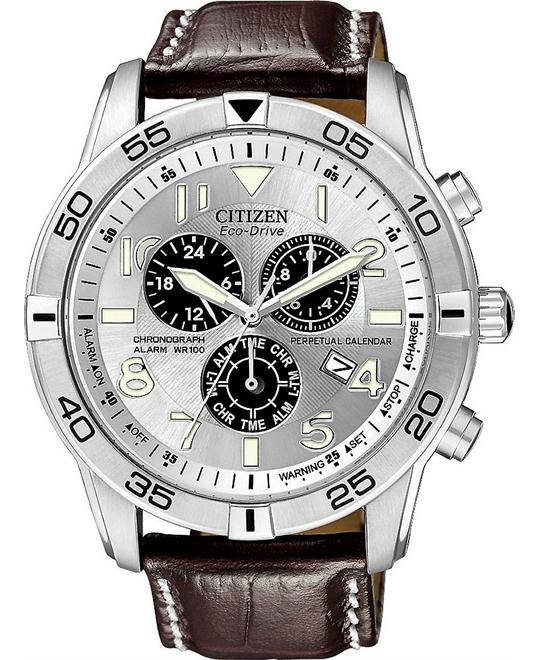 CITIZEN Perpetual Calendar Eco-Drive Watch 44mm