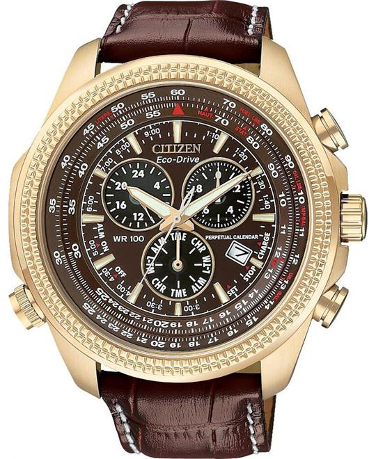 CITIZEN Perpetual Calendar Chronograph Watch 48mm