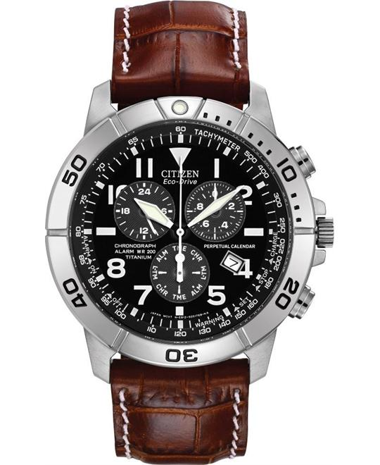 CITIZEN  Perpetual Calendar Eco-Drive Watch 43mm