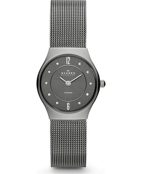 GREY MESH TITANIUM WATCH 24MM