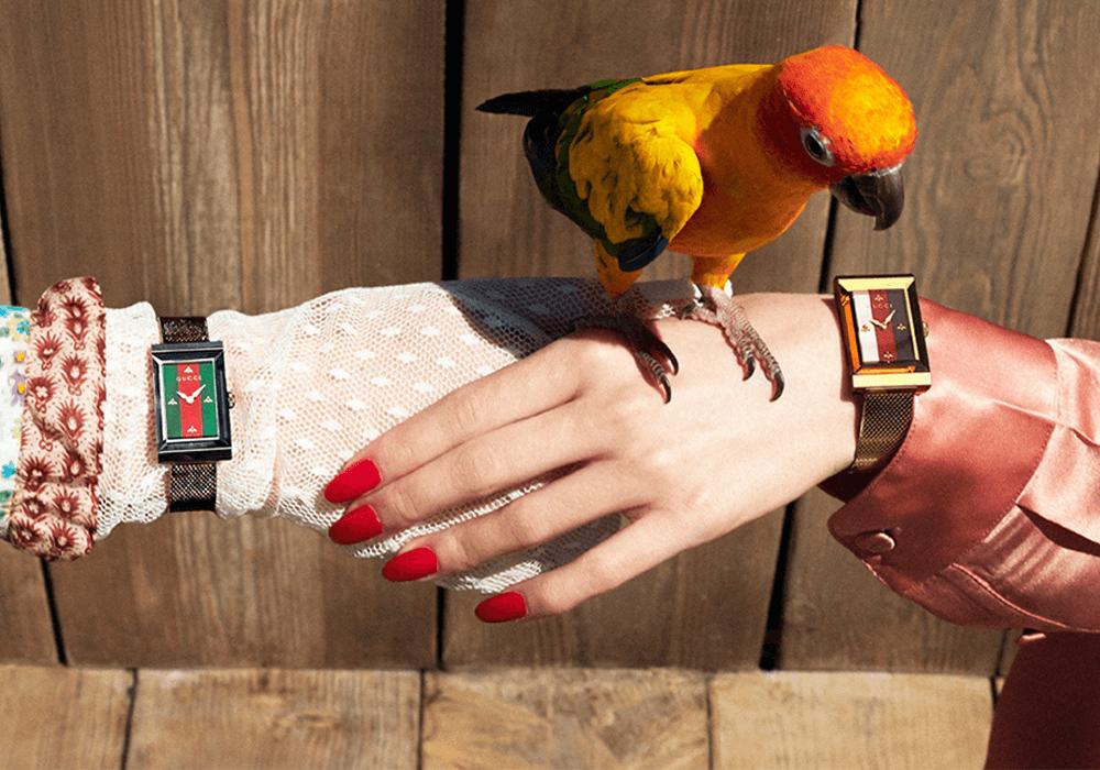 Bộ sưu tập đồng hồ Gucci G-Frame 2019